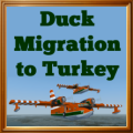 Duck Migration to Turkey given to pilots who completed the tour.