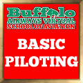 BAVSOA Basic Piloting award